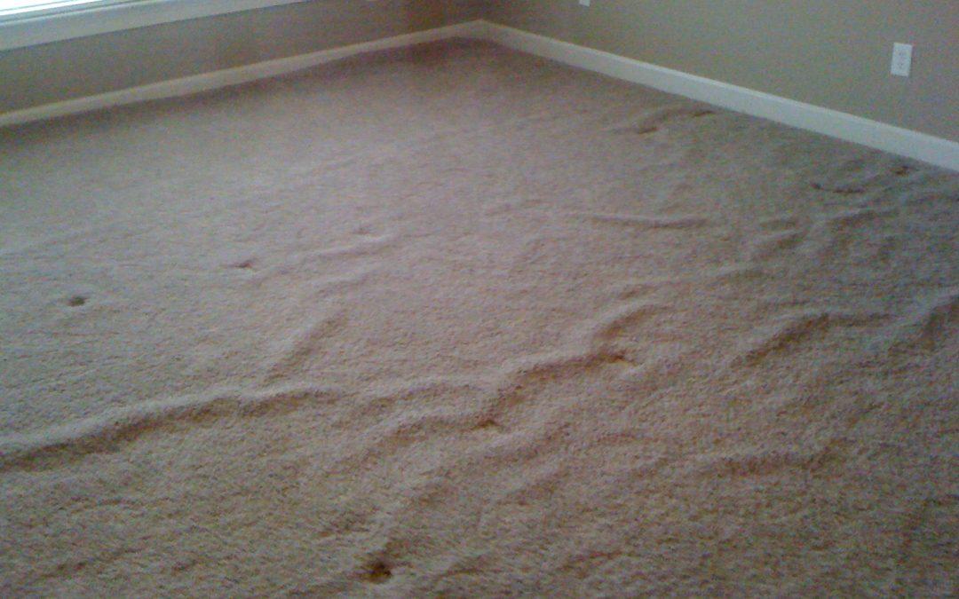 Oakland, Tn Carpet Stretch