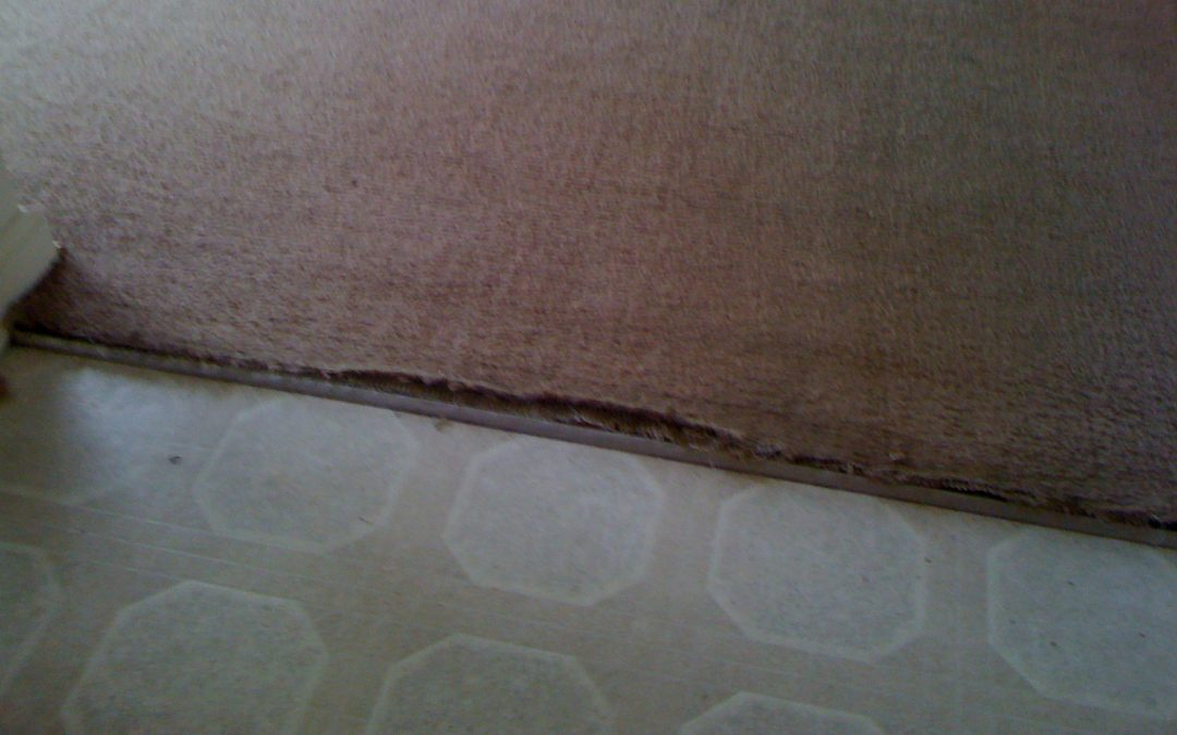 Memphis Carpet Transition Repair