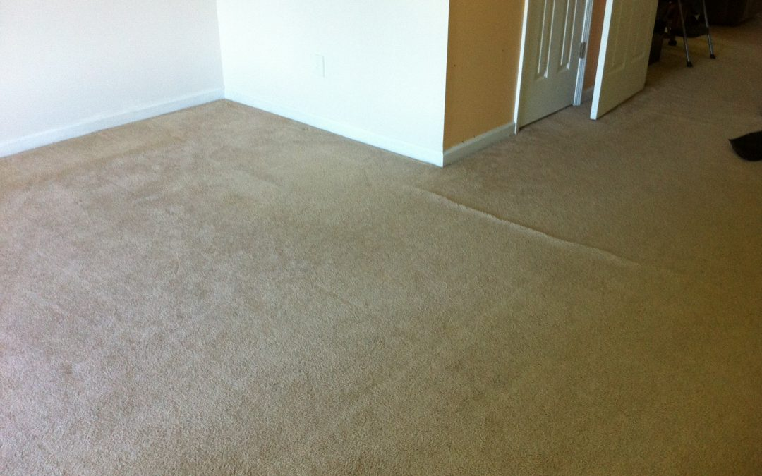 Brighton, Tn Carpet Re-Stretch