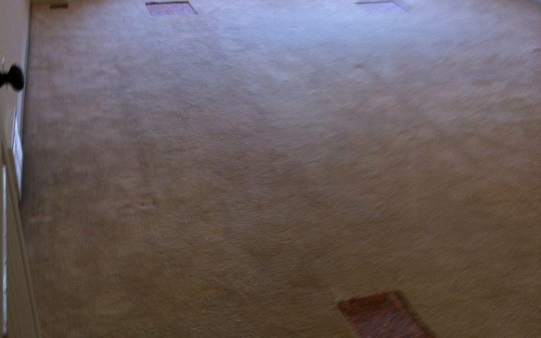 Arlington, Tn New Carpet Install