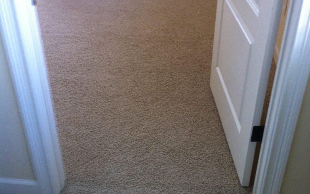 Germantown, Tn Carpet Re-Stretch